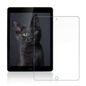 Premium Panzerglas Apple iPad 9.7″ (2018)